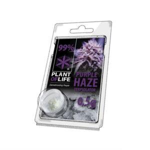 ΚΡΥΣΤΑΛΛΟΣ PURPLE HAZE PLANT OF LIFE