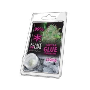 ΚΡΥΣΤΑΛΛΟΣ GORILLA GLUE PLANT OF LIFE